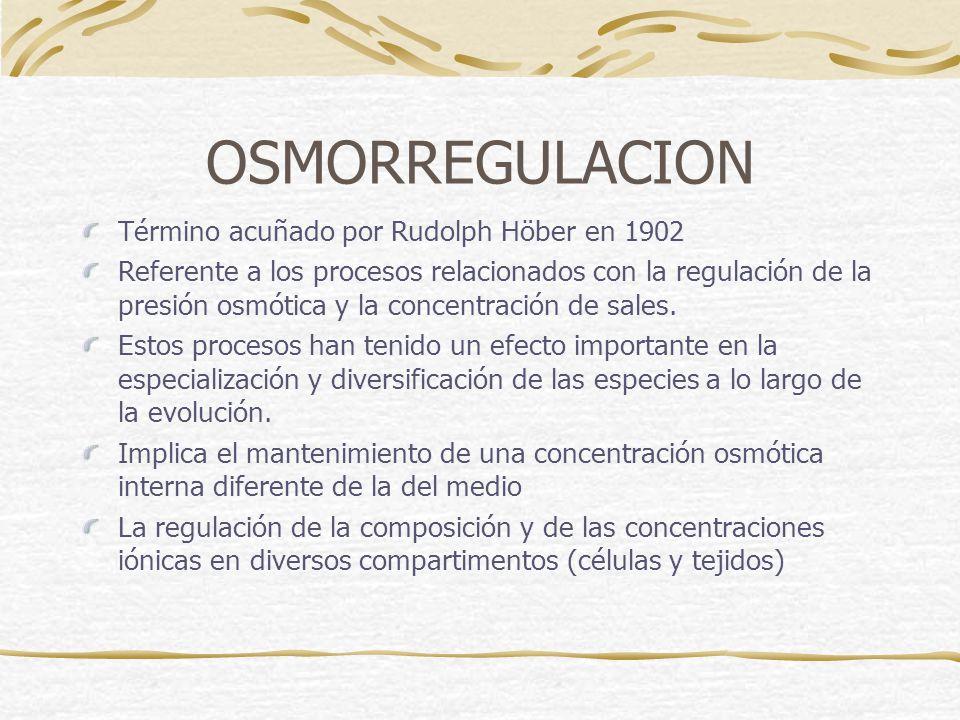 OSMORREGULACION Término acuñado por Rudolph Höber en 1902