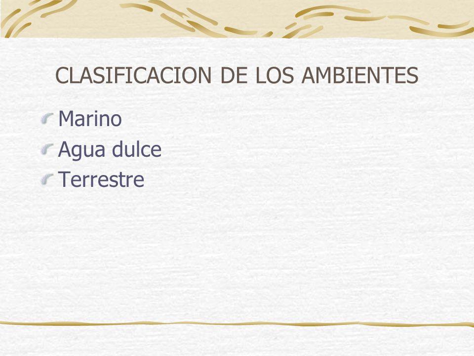 CLASIFICACION DE LOS AMBIENTES