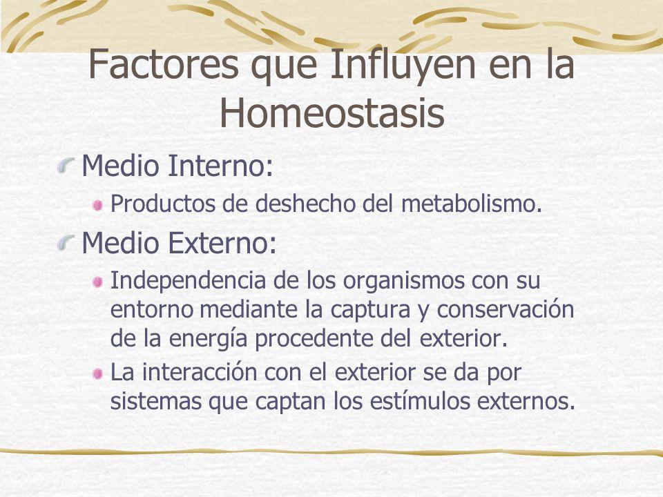 Factores que Influyen en la Homeostasis