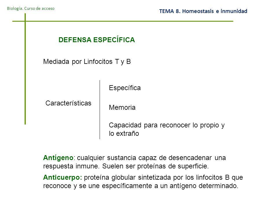 DEFENSA ESPECÍFICA Mediada por Linfocitos T y B. Específica. Características. Memoria. Capacidad para reconocer lo propio y lo extraño.