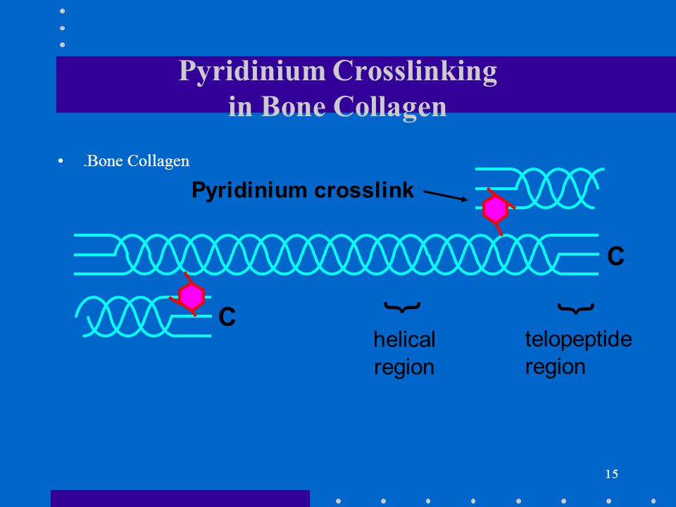 Pyridinium Crosslinking in Bone Collagen