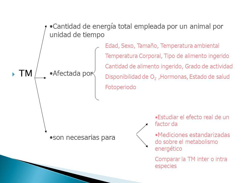 TM Cantidad de energía total empleada por un animal por unidad de tiempo. Afectada por. son necesarias para.