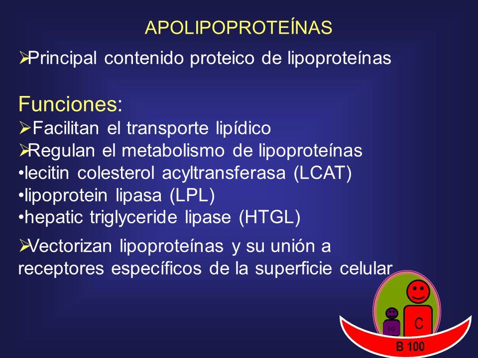 Funciones: APOLIPOPROTEÍNAS