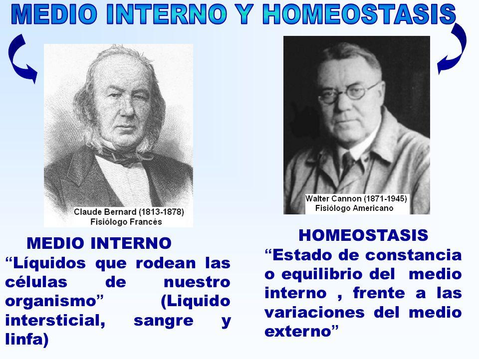 MEDIO INTERNO Y HOMEOSTASIS
