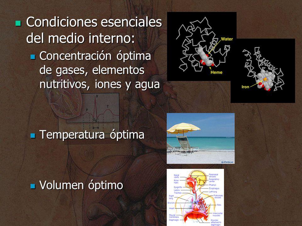 Condiciones esenciales del medio interno: