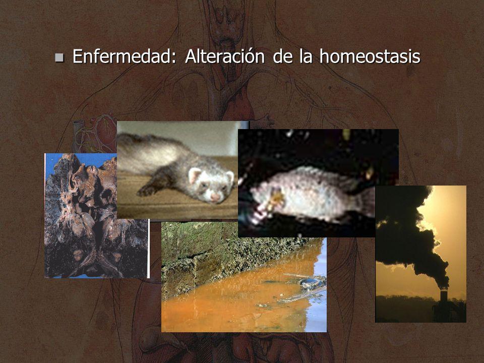Enfermedad: Alteración de la homeostasis