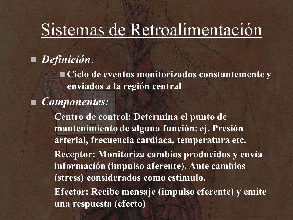 Sistemas de Retroalimentación