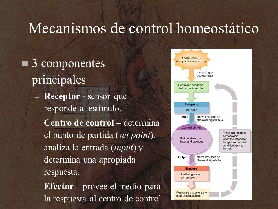 Mecanismos de control homeostático