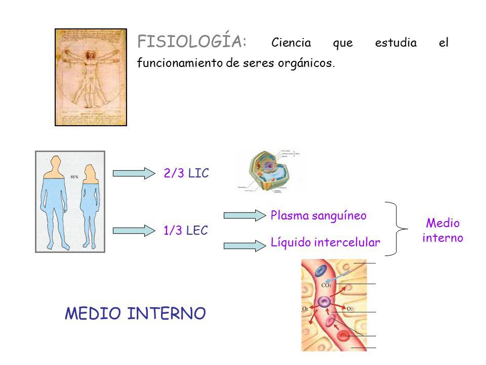 FISIOLOGÍA: Ciencia que estudia el funcionamiento de seres orgánicos.