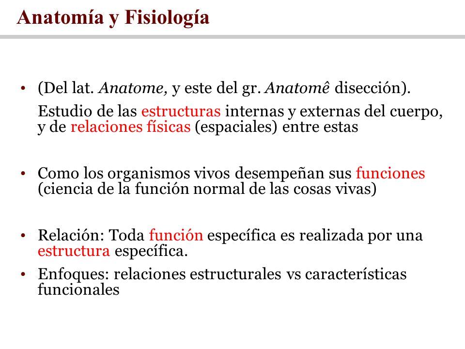 Anatomía y Fisiología (Del lat. Anatome, y este del gr. Anatomê disección).