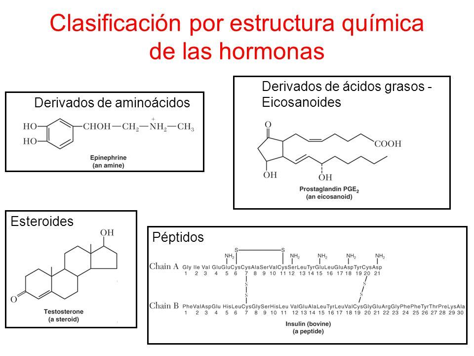 Clasificación por estructura química de las hormonas