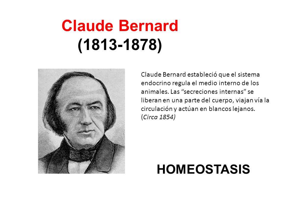 Claude Bernard (1813-1878) HOMEOSTASIS