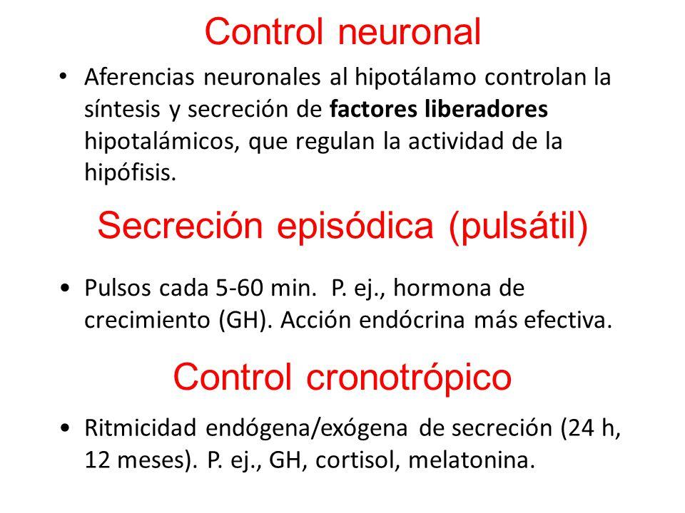 Secreción episódica (pulsátil)