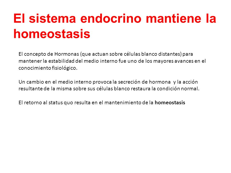 El sistema endocrino mantiene la homeostasis