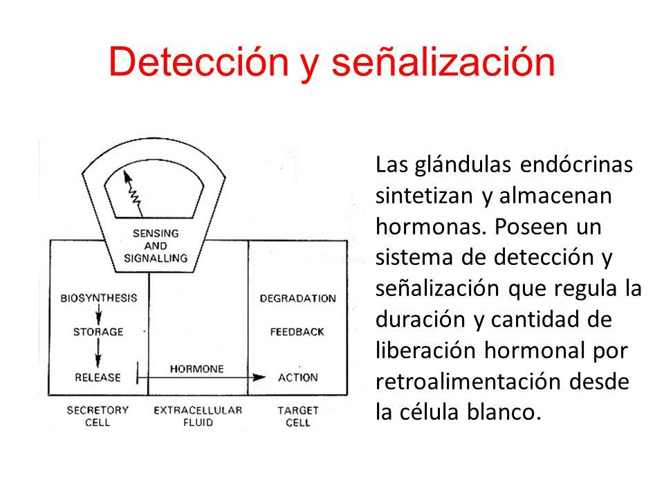 Detección y señalización