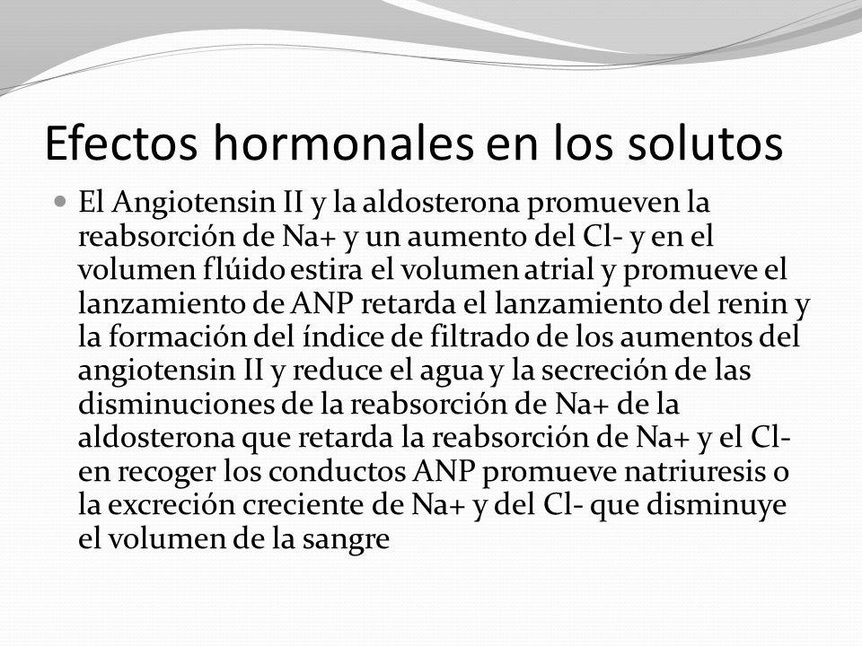 Efectos hormonales en los solutos