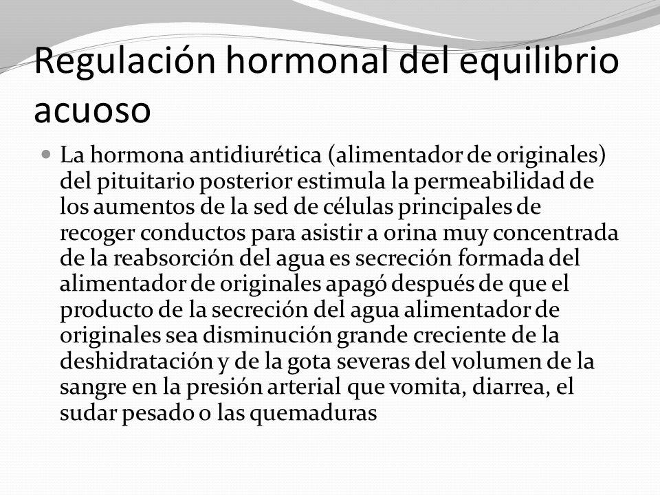 Regulación hormonal del equilibrio acuoso