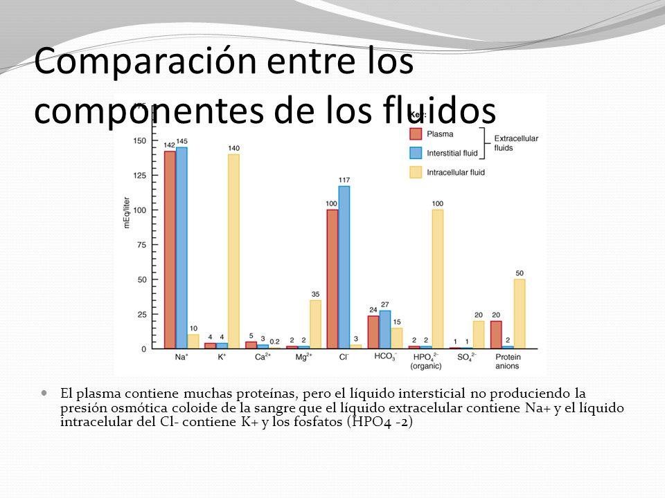 Comparación entre los componentes de los fluidos