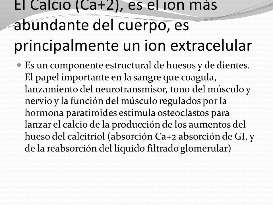 El Calcio (Ca+2), es el ion más abundante del cuerpo, es principalmente un ion extracelular
