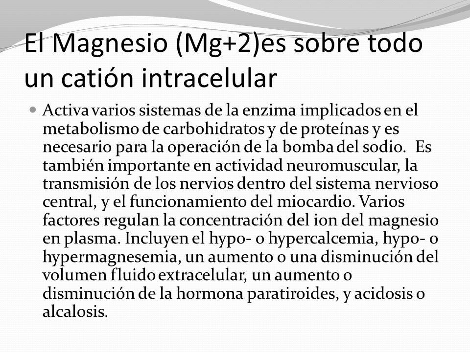 El Magnesio (Mg+2)es sobre todo un catión intracelular