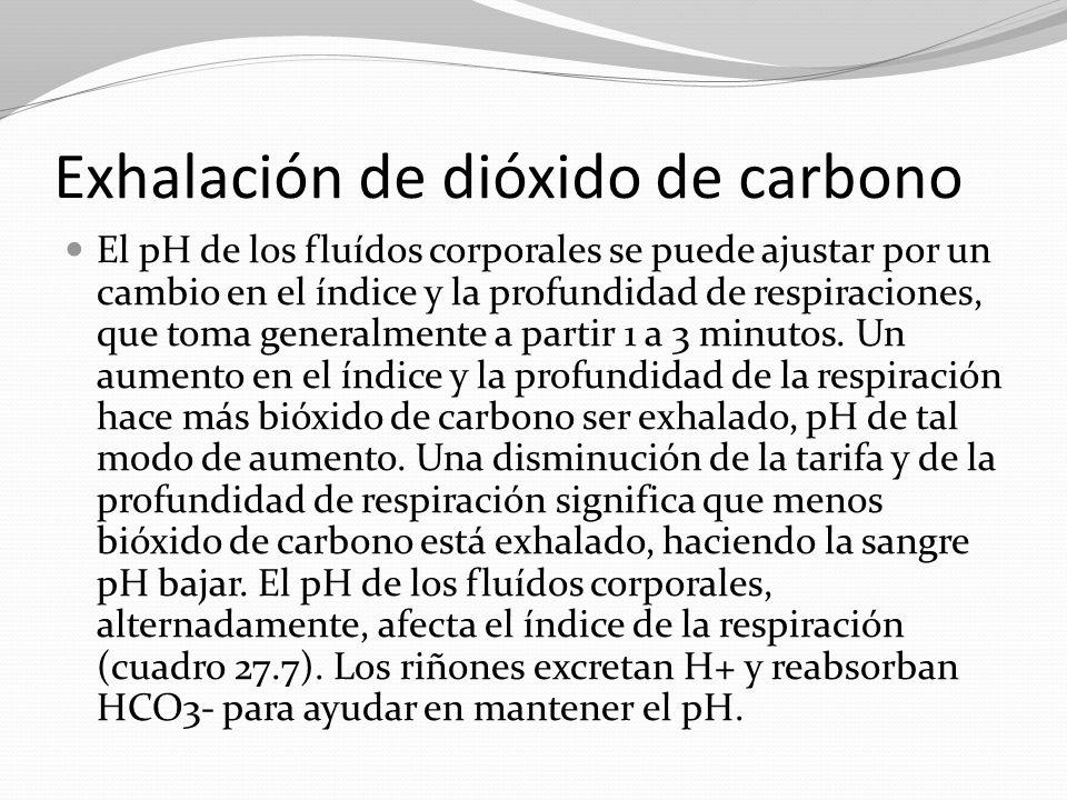 Exhalación de dióxido de carbono