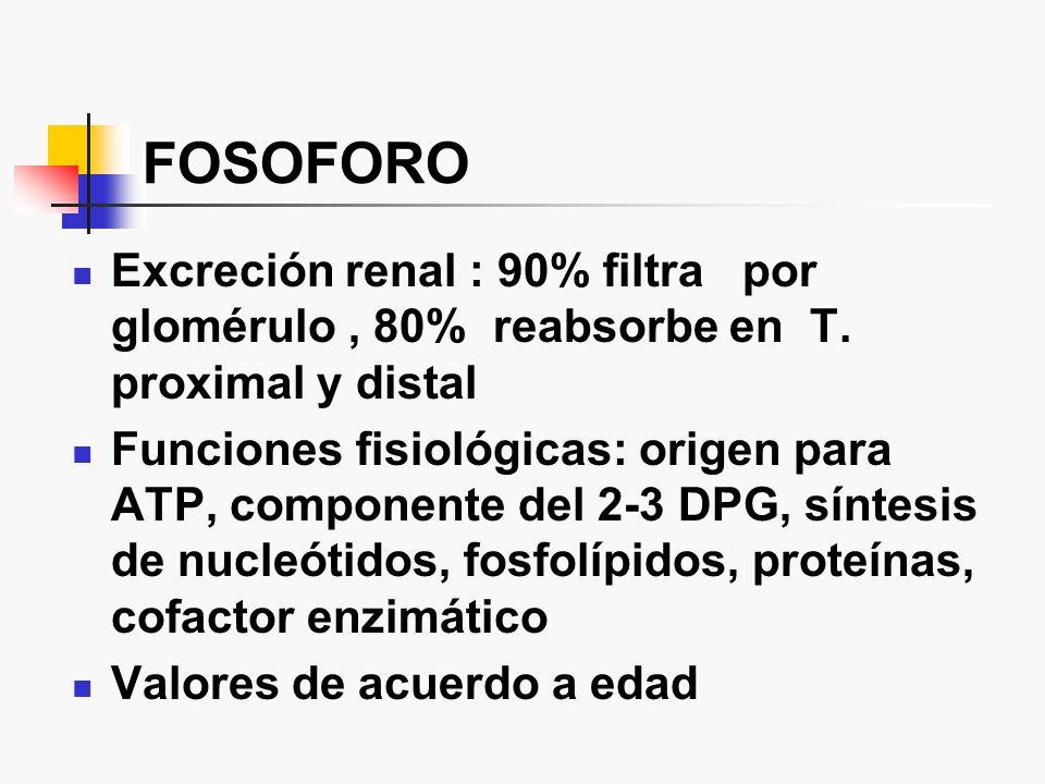 FOSOFORO Excreción renal : 90% filtra por glomérulo , 80% reabsorbe en T. proximal y distal.
