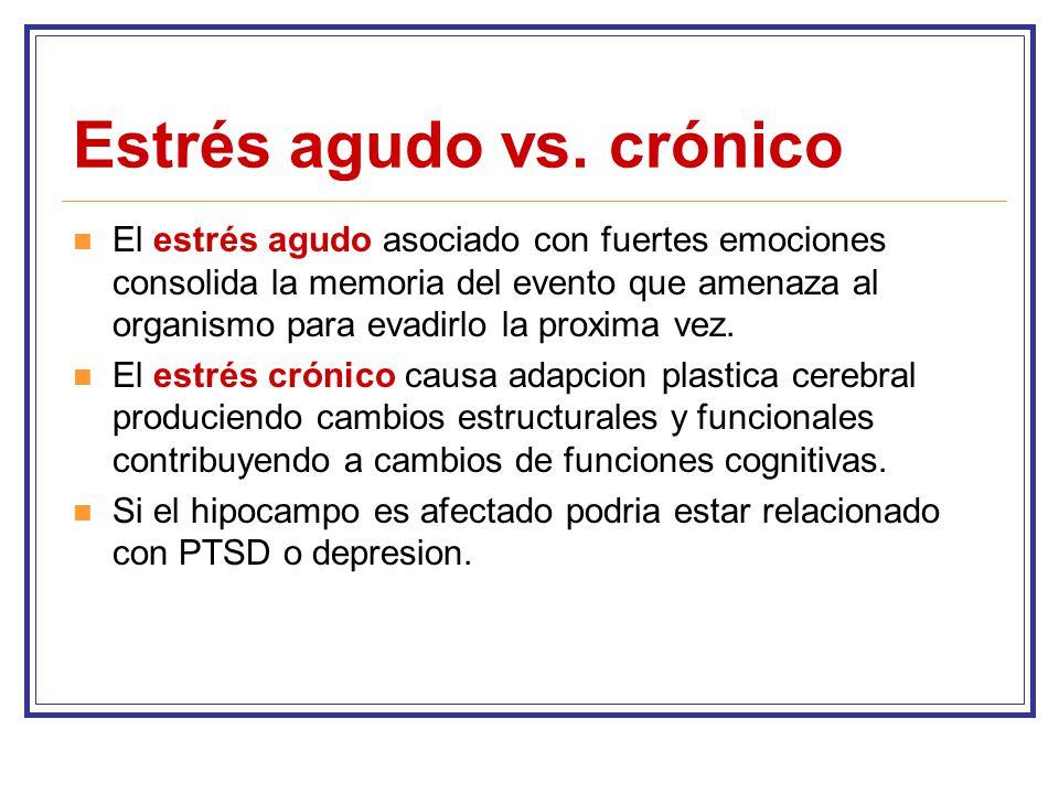 Estrés agudo vs. crónico
