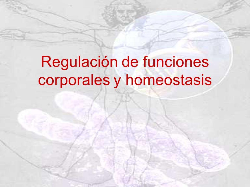 Regulación de funciones corporales y homeostasis