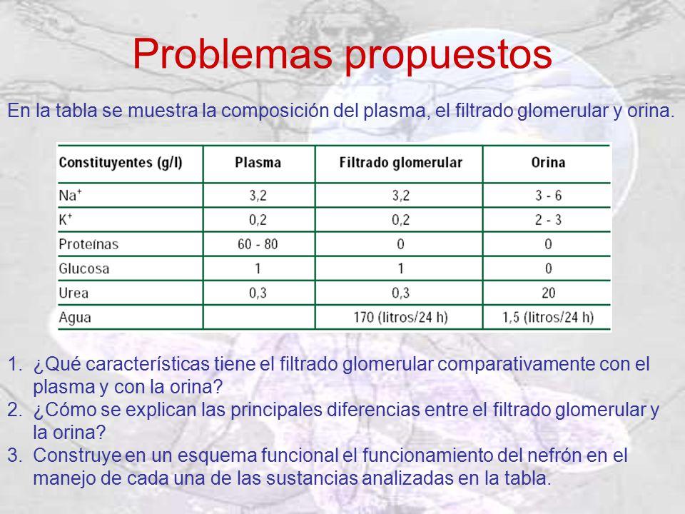 Problemas propuestos En la tabla se muestra la composición del plasma, el filtrado glomerular y orina.