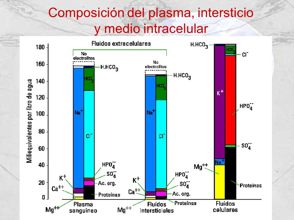Composición del plasma, intersticio y medio intracelular