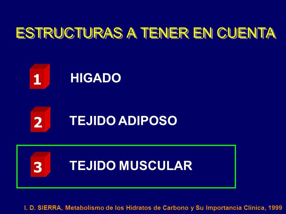 ESTRUCTURAS A TENER EN CUENTA