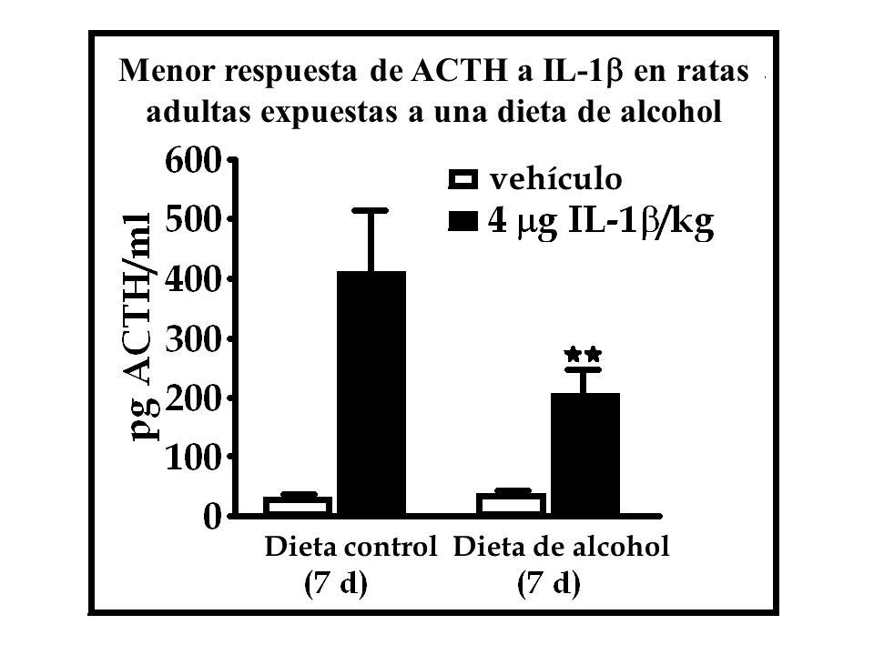 Menor respuesta de ACTH a IL-1b en ratas adultas expuestas a una dieta de alcohol