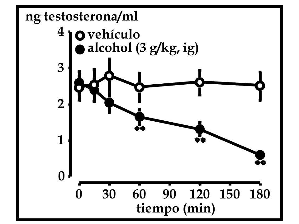 ng testosterona/ml 4 vehículo alcohol (3 g/kg, ig) 3 2 1 30 60 90 120