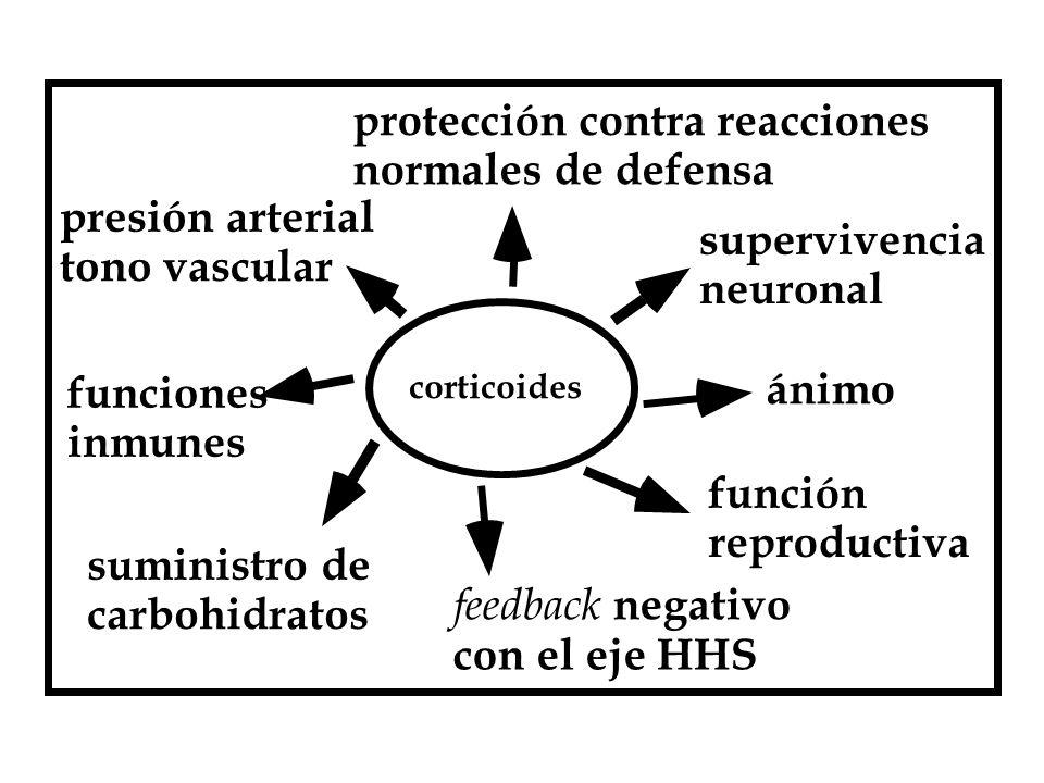 protección contra reacciones normales de defensa presión arterial
