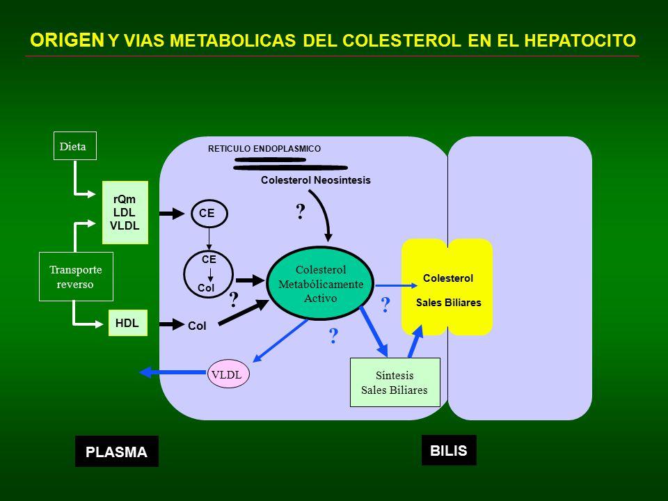 ORIGEN Y VIAS METABOLICAS DEL COLESTEROL EN EL HEPATOCITO