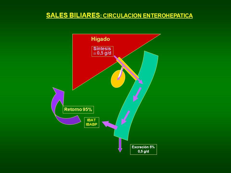 SALES BILIARES: CIRCULACION ENTEROHEPATICA