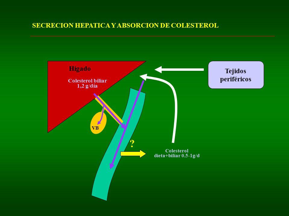 SECRECION HEPATICA Y ABSORCION DE COLESTEROL Tejidos periféricos