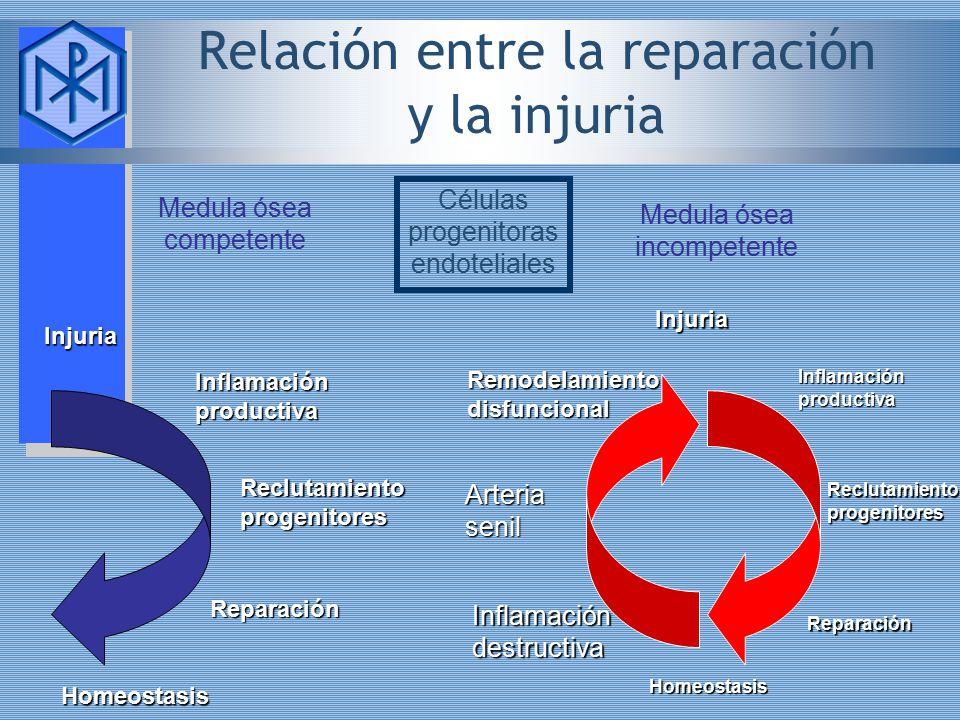 Relación entre la reparación y la injuria