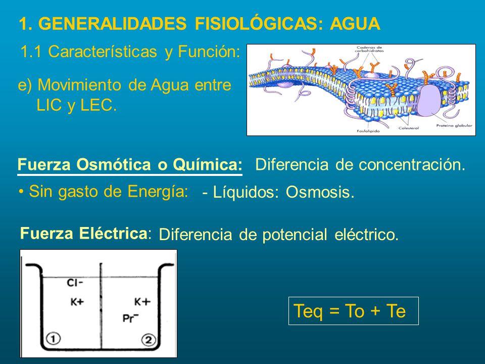 Teq = To + Te 1. GENERALIDADES FISIOLÓGICAS: AGUA