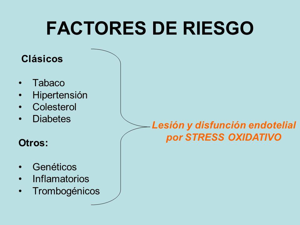Lesión y disfunción endotelial por STRESS OXIDATIVO