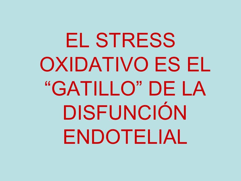 EL STRESS OXIDATIVO ES EL GATILLO DE LA DISFUNCIÓN ENDOTELIAL