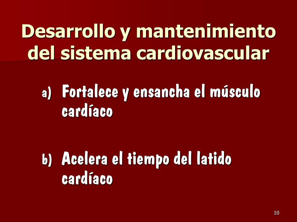 Desarrollo y mantenimiento del sistema cardiovascular