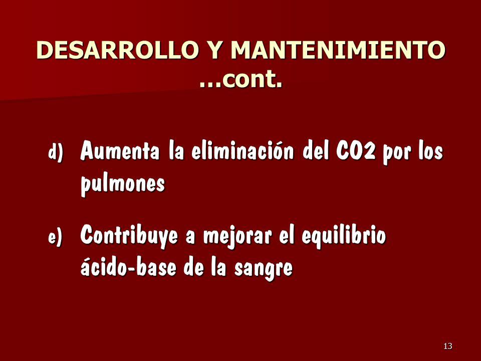 DESARROLLO Y MANTENIMIENTO …cont.
