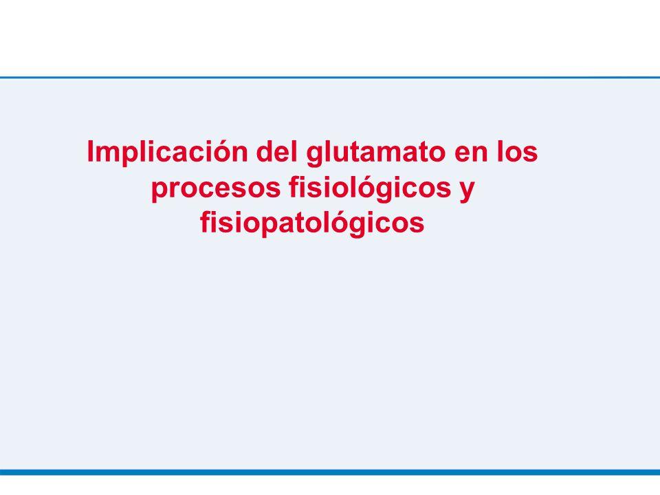 Implicación del glutamato en los procesos fisiológicos y fisiopatológicos