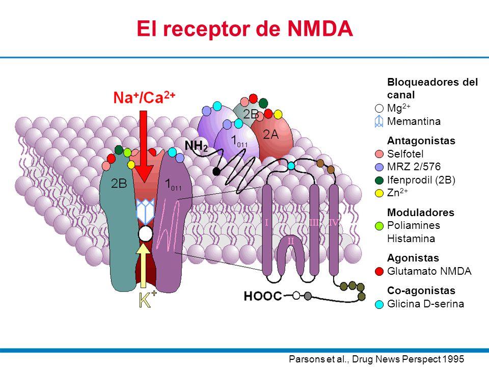 El receptor de NMDA Bloqueadores del canal Mg2+ Memantina