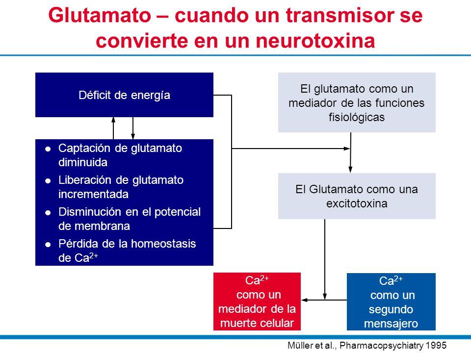 Glutamato – cuando un transmisor se convierte en un neurotoxina