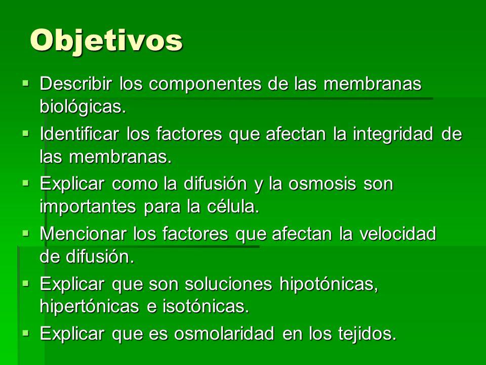 Objetivos Describir los componentes de las membranas biológicas.