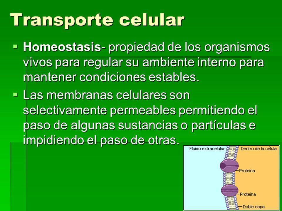 Transporte celular Homeostasis- propiedad de los organismos vivos para regular su ambiente interno para mantener condiciones estables.