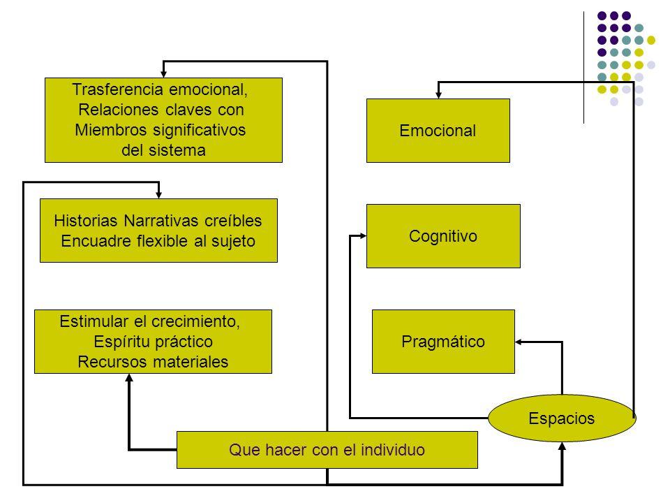 Trasferencia emocional, Relaciones claves con Miembros significativos