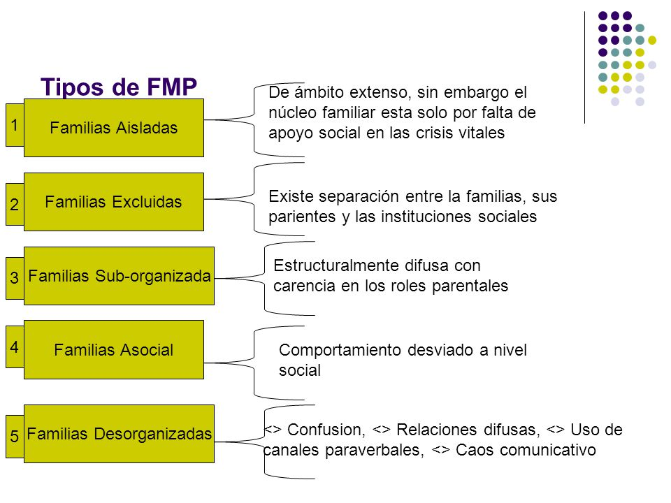 Tipos de FMP De ámbito extenso, sin embargo el núcleo familiar esta solo por falta de apoyo social en las crisis vitales.
